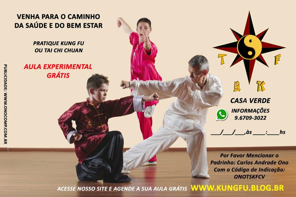kung-fu-carlos-ono