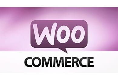 Noção Básica de WooCommerce