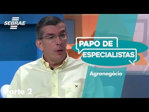 AGRONEGÓCIO // Bloco 2
