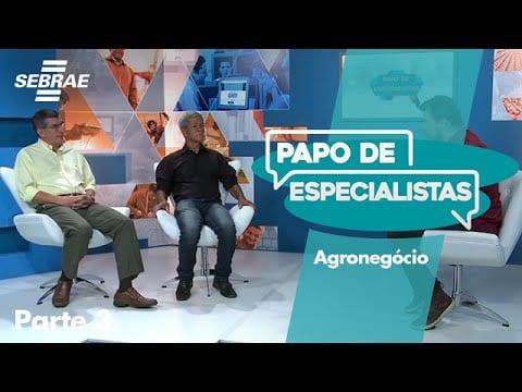 AGRONEGÓCIO // Bloco 3
