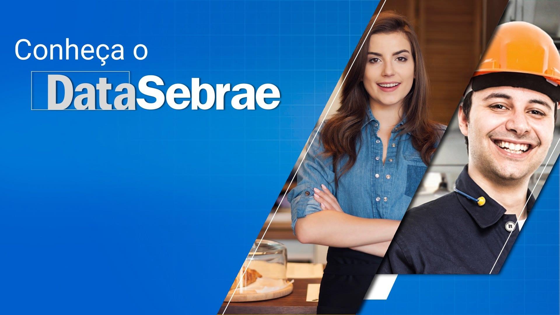 DataSebrae